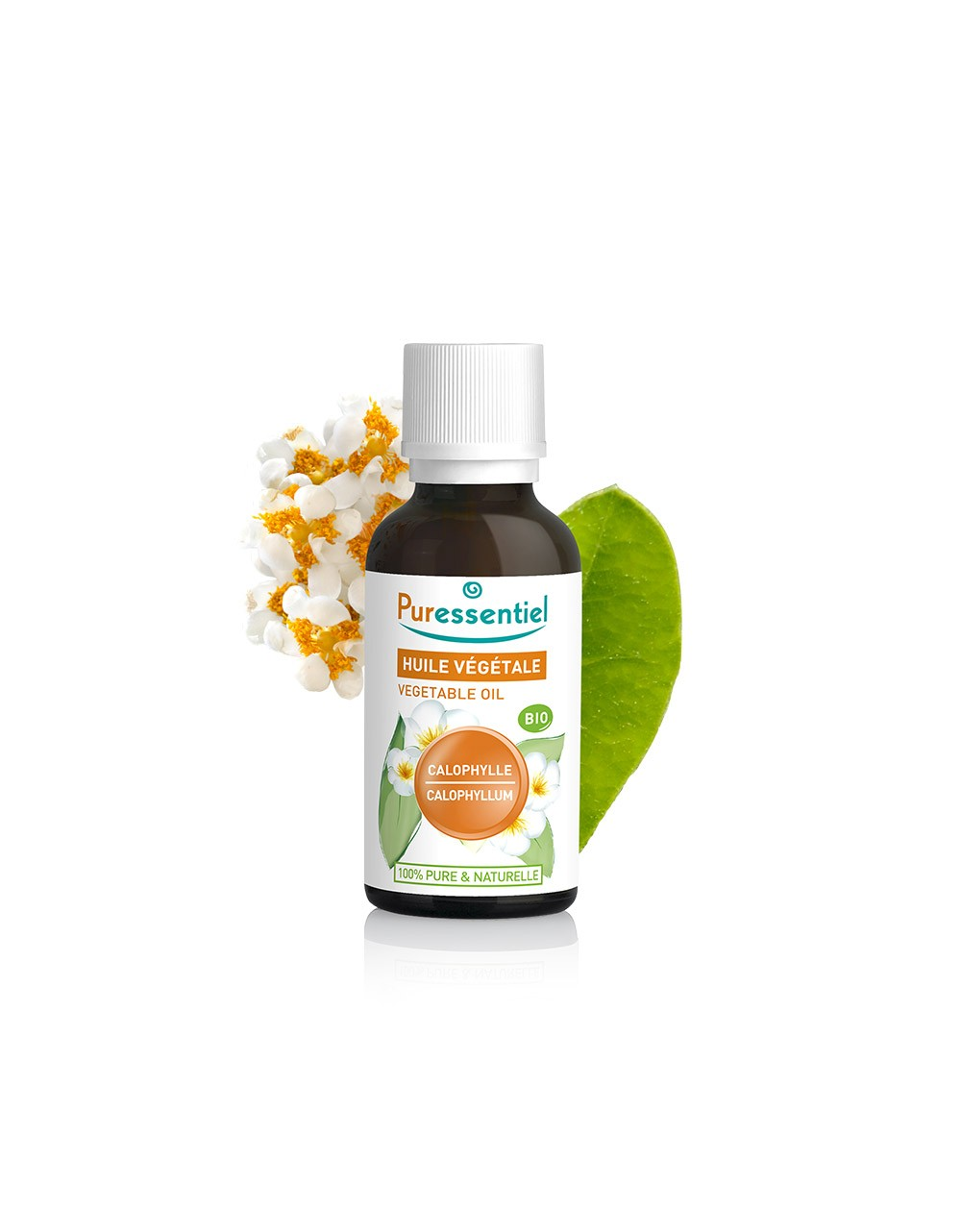 Aceite vegetal de Colófilo